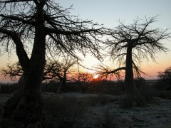 African Adventure Safaris  -  Botswana, Kubu Island Sunset