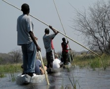 Lower-Priced Safaris  -  Okavango Delta Mokoro Excursions