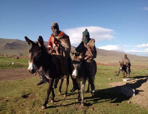 10 Day Lesotho & Drakensberg Safari Package
